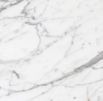 ts white carrara marble