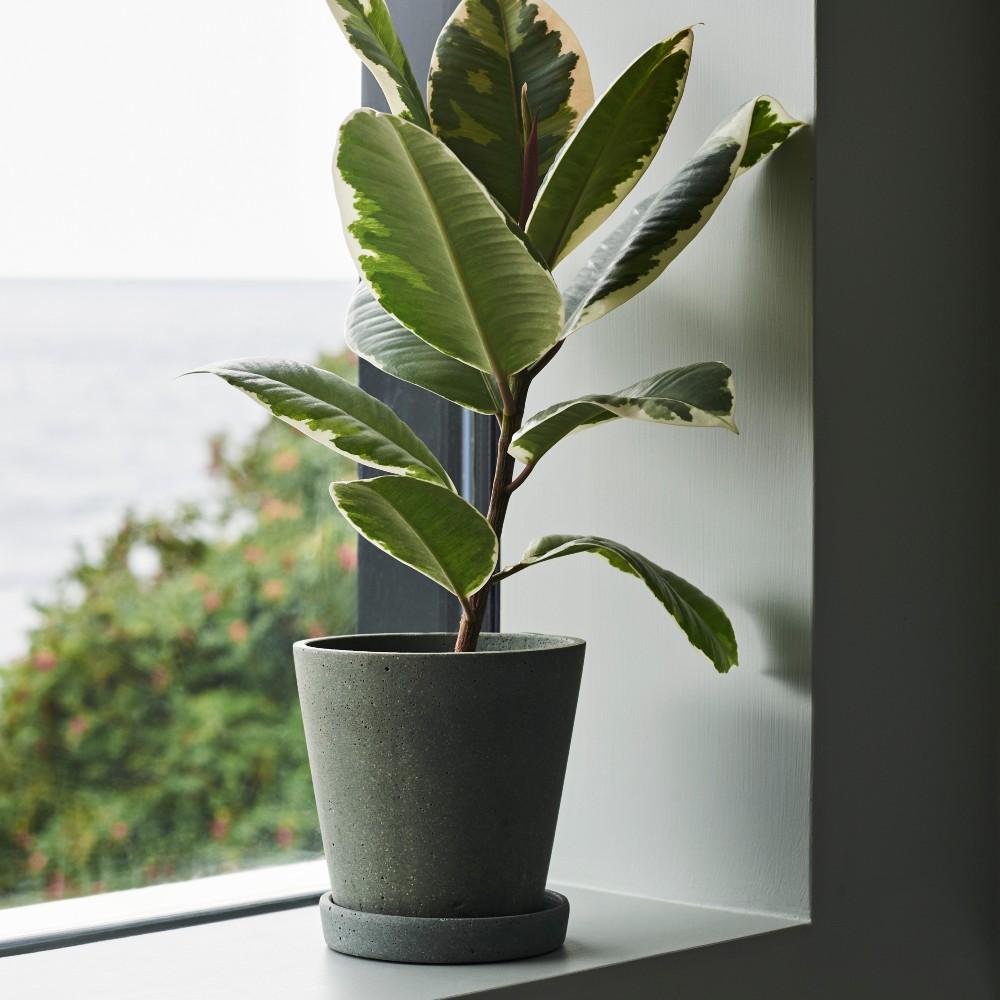 hay flower pot with saucer green M Situ contemporary designer homeware
